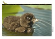 Baby Loon Carry-all Pouch