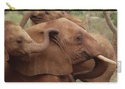 Baby Orphans Explore Imenti Tsavo Kenya Carry-all Pouch
