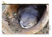 Baby Otter Carry-all Pouch