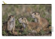 Baby Prairie Dogs Carry-all Pouch