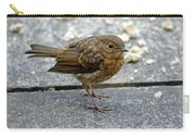 Baby Robin Feeding Carry-all Pouch