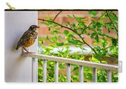 Baby Robin - Such A Big World Carry-all Pouch
