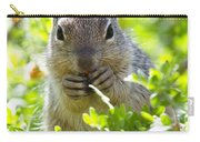Baby Rock Squirrel  Carry-all Pouch