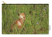 Baby Sandhill Crane Chick Carry-all Pouch