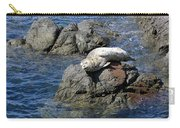 Baby Sea Lion On Rock At San Juan Island Carry-all Pouch