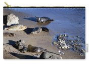 Baby Seals Carry-all Pouch