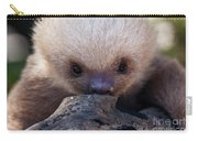 Baby Sloth 2 Carry-all Pouch by Heiko Koehrer-Wagner