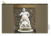 Bacchus Fountain Carry-all Pouch
