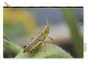 Back Side View Of Green Grasshopper....   # Carry-all Pouch