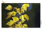 Backlit Leaves Of Autumn Carry-all Pouch