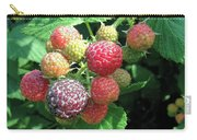 Fruit- Black Raspberries - Luther Fine Art Carry-all Pouch