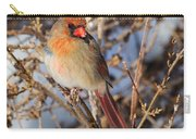 Backyard Birds Female Nothern Cardinal Carry-all Pouch