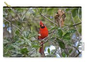 Backyard Cardinal In Tree Carry-all Pouch