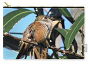 Bahama Woodstar Hummingbird Carry-all Pouch