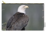 Bald Eagle On Nest With Chick Alaska Carry-all Pouch by Michael Quinton