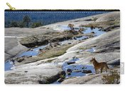 Bald Rock Lookout Carry-all Pouch