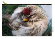 Ball Of Feathers Carry-all Pouch by Christina Rollo