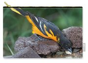Baltimore Oriole Drinking Carry-all Pouch