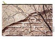 Bare Tree Adobe Wall Carry-all Pouch by Joe Kozlowski