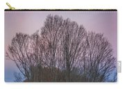 Bare Trees And Autumn Sky Carry-all Pouch