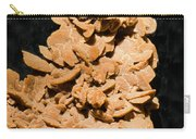 Barite Carry-all Pouch