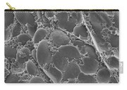 Barley Grain Cross Section, Sem Carry-all Pouch