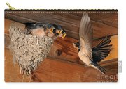 Barn Swallow Nest Carry-all Pouch by Scott Linstead