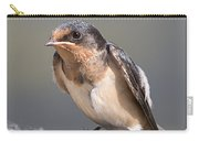 Barn Swallow On Rope I Carry-all Pouch by Patti Deters