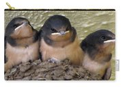 Barn Swallows 1 Carry-all Pouch