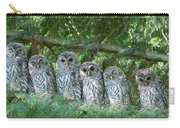 Barred Owlets Nursery Carry-all Pouch by Jennie Marie Schell