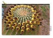 Barrel Cactus Bearing Fruit At El Mirador Rv Resort In San Carlos-sonora-mexico Carry-all Pouch