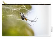 Basilica Orb Weaver Carry-all Pouch