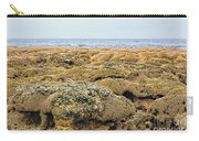 Sabellariid Worm Reef  Carry-all Pouch