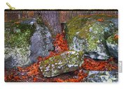 Battlefield In Fall Colors Carry-all Pouch