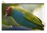 Bay-headed Tanager - Tangara Gyrola Carry-all Pouch