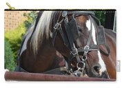 Bay Pinto Amish Buggy Horse Carry-all Pouch