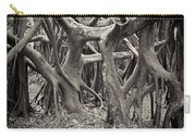 Baynan Roots Carry-all Pouch