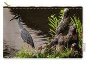 Bayou Bird Carry-all Pouch