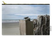 Beach And Sky Carry-all Pouch