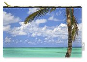 Beach Of A Tropical Island Carry-all Pouch by Elena Elisseeva