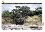 Beachtree Carry-all Pouch