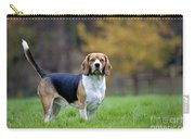 Beagle Dog Carry-all Pouch