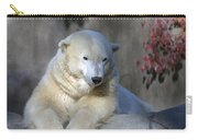 Bear 3789 Carry-all Pouch