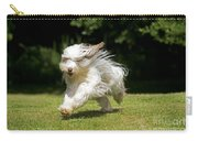 Bearded Collie Running Carry-all Pouch