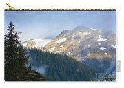 Bears With A View Carry-all Pouch