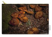 Beartooth Mountain Mushrooms   #3661 Carry-all Pouch