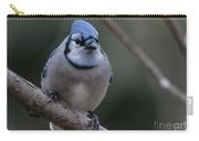 Beautiful Bluejay Carry-all Pouch