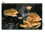 Beautiful Bracket Fungus Carry-all Pouch