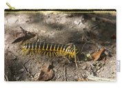 Beautiful Bug Carry-all Pouch