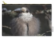 Beautiful Grey Jay Pose Carry-all Pouch